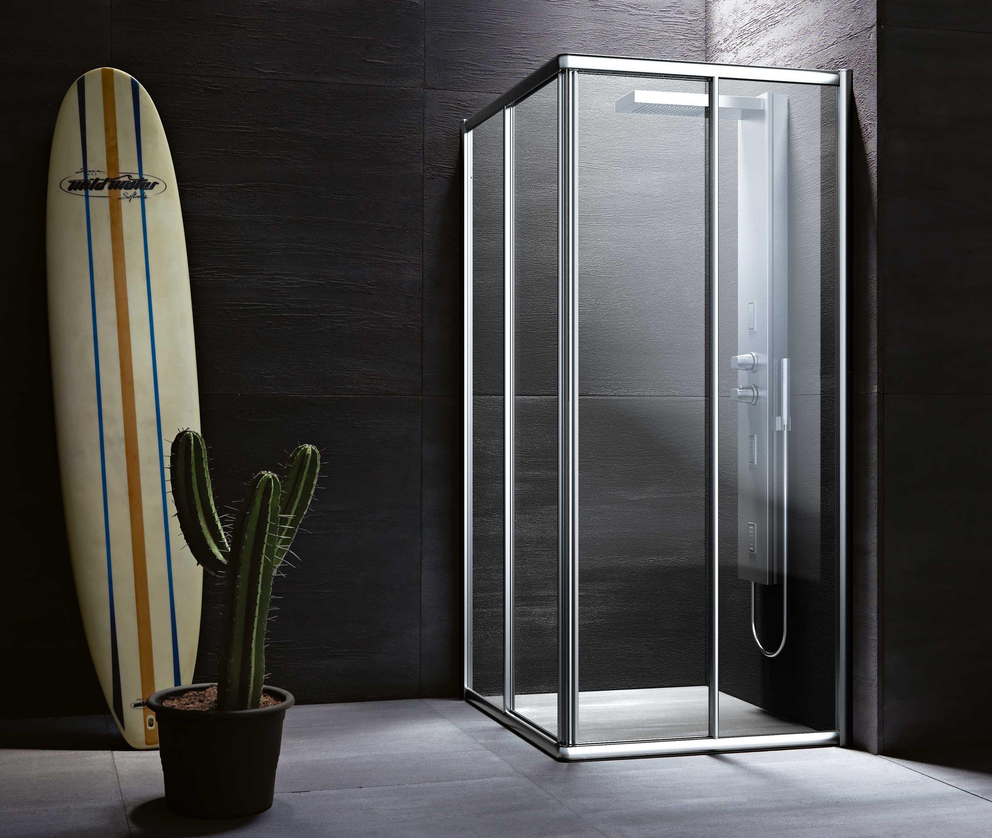 Душевая кабина для серой ванной комнаты с кактусом